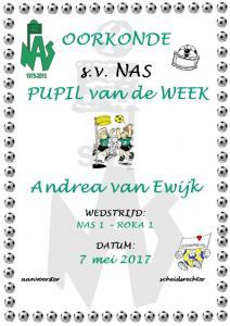 Andrea van Ewijk