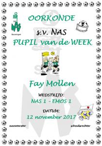 Fay Mollen