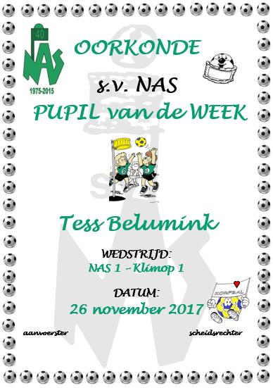 Tess Bleumink